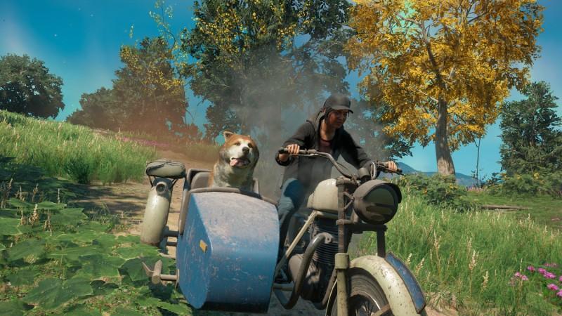 Far Cry New Dawn Timber